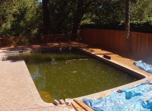 Laffayette Green Pool Before