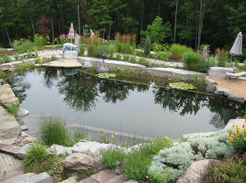 Refreshing-natural-pool-that-replicates-a-pond-in-the-forest