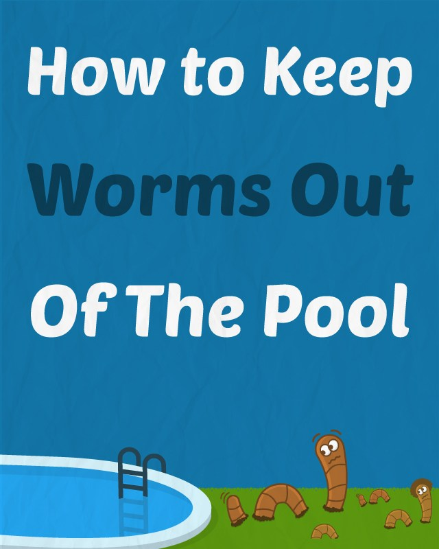 PoolWorms-Pinterest